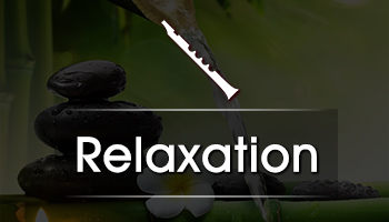 https://cdnwapdom.shemaroo.com/shemaroomusic/imagepreview/250x350/instrumental_relaxation_250x350.jpg?selAppId=shemaroomusic